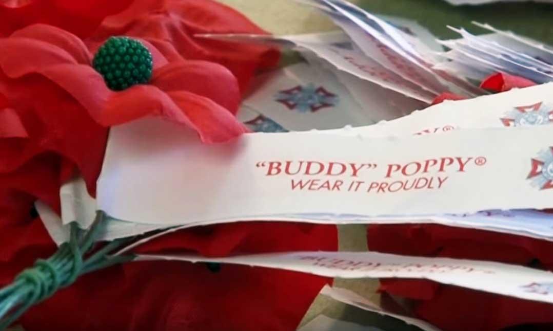 Buddy poppy vfw mightylinksfo